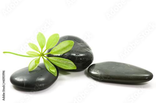 Akustikstoff - Therapy stones