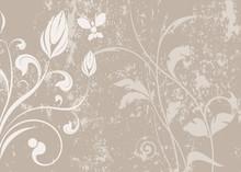 Vecteur Série - étrange Plante Et Papillon