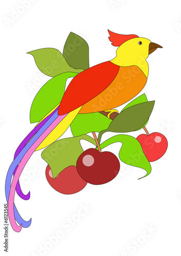 Poster Oiseaux, Abeilles The bright tropical bird sitting on a branch of a cherry tree