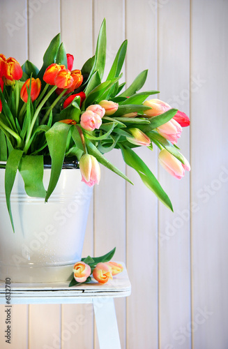 barwioni-wiosna-tulipany-na-starej-lawce
