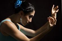 Passionate Flamenco Dancer Girl Isolated On Black