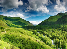 Mountain Landscape With Forest...