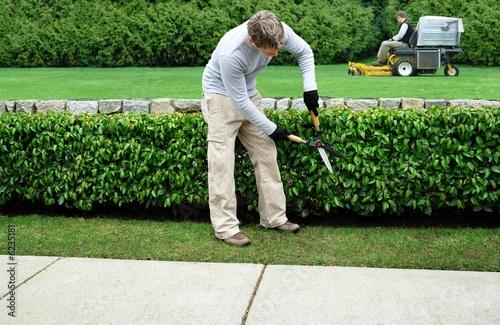 Papiers peints Jardin landscaping company