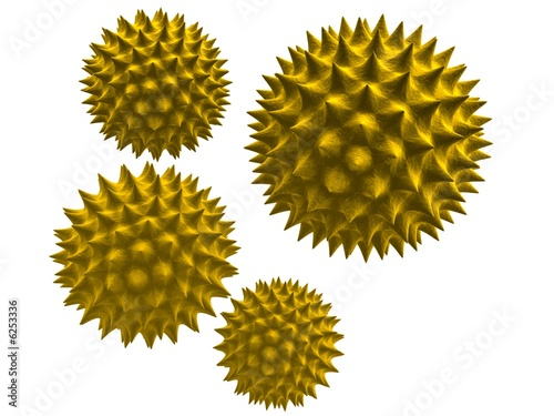 Fotografija 3d pollen