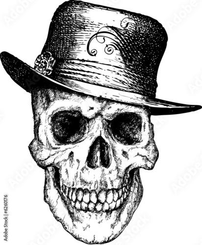 Pimp skull illustration Slika na platnu