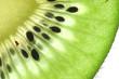 Kiwi auf weissem Hintergrund