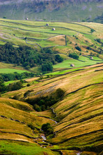 Walls And Barns In Swaledale, ...