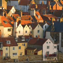 Roofs At Whitby, North Yorkshi...
