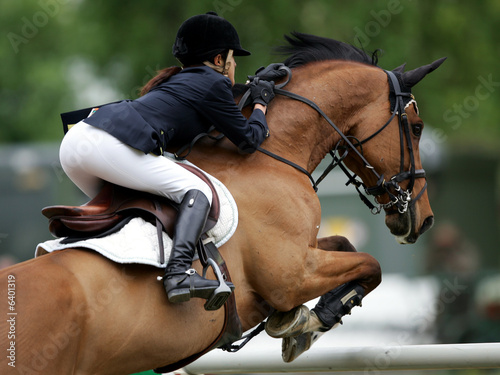 Photo sur Aluminium Equitation Springreiten
