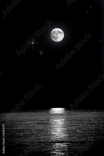 Obraz notte con luna piena - fototapety do salonu