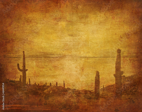 grunge background with wild west landscape Poster