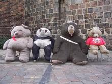 Bären, Bär, Berlin, Bärlin, Bruno, Knut, Flocke