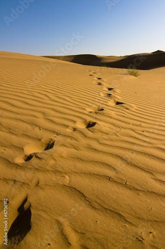 Poster de jardin Desert de sable Footprints