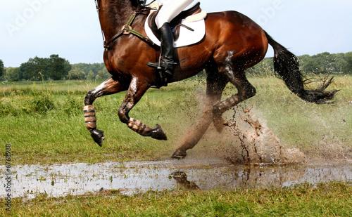 Spoed Foto op Canvas Paardrijden Horsepower 3