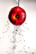 canvas print picture Water pouring  and splashing over a red delicious apple on white
