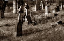 Old Cementery In Sepia