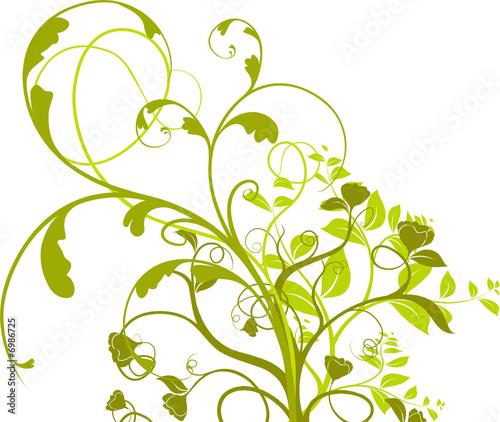 wektor-zestaw-roslina-kwitnaca-na-bialym-tle