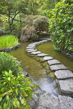 Footpath Through A Pond.