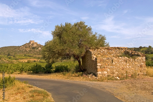 chateau d'Aguilar плакат