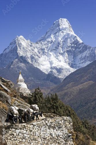 Staande foto Nepal Mt. Ama Dablam and trekkers