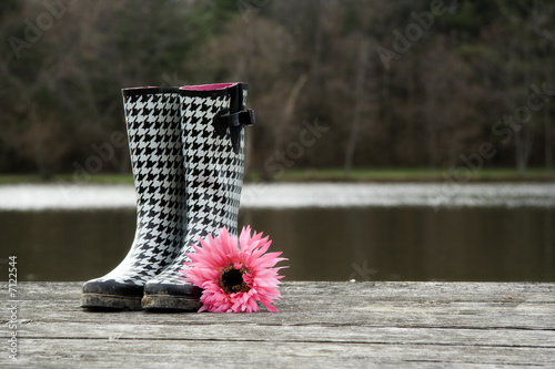 Photo  Houndstooth boots