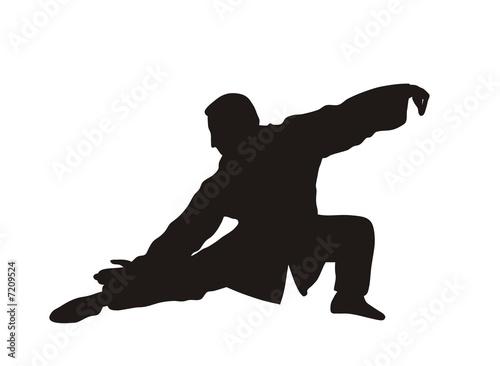 Karate Tableau sur Toile
