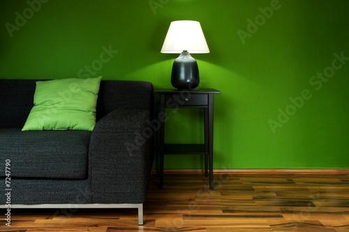 Fényképezés  Green room with sofa