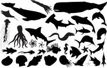 Marine Life Silhouettes (more Detailed Versions Available)