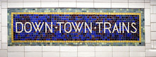 Downtown Trains Sign In New Yo...