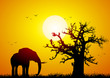 canvas print picture Elephant and baobab at sunset