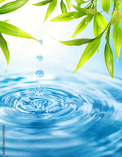 Foto-Kissen - Water drops folling from a bamboo leaf