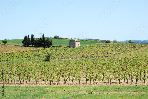 Fotografía  Paysage du Sud de la France