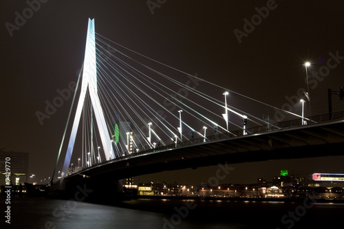 Foto auf AluDibond Schwan Night view of Erasmus Bridge in Rotterdam