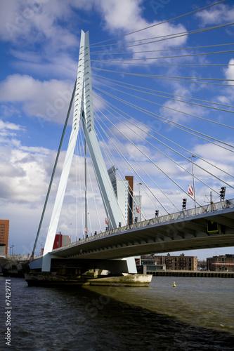 Foto auf Acrylglas Schwan Erasmus Bridge in Rotterdam