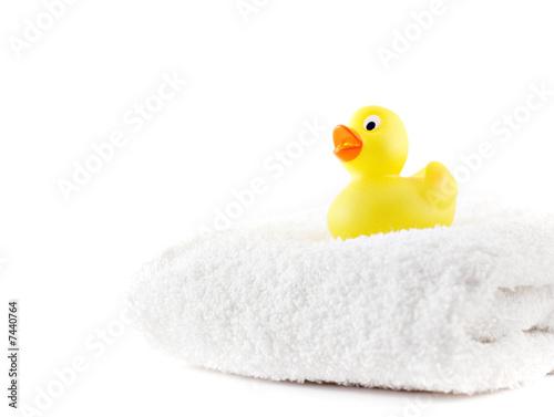 Fotografie, Obraz  Rubber duck on white towel