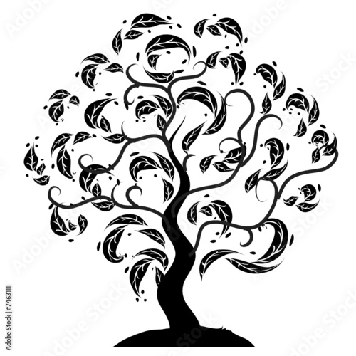 drzewo-sylwetka-stara-trawa-lato