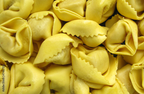 Tortelline Italian pasta with cheese, meat and mushrooms Canvas Print