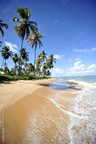 Foto-Leinwand - Salvador de Bahia