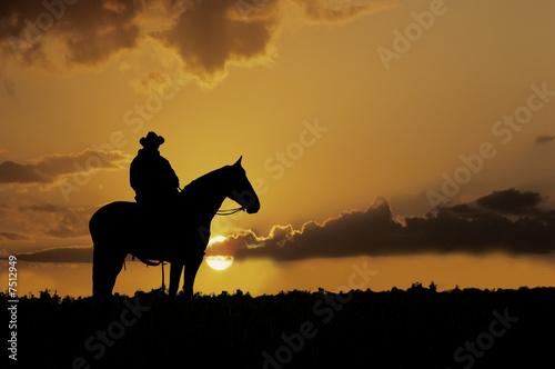 Fotografie, Obraz  Cowboy silhouette