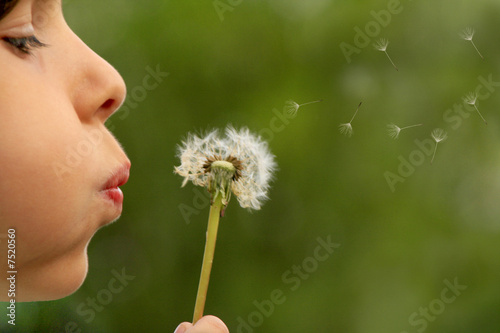 Deurstickers Paardebloem child blowing dandelion clock