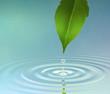 Leinwandbild Motiv Water Ripple