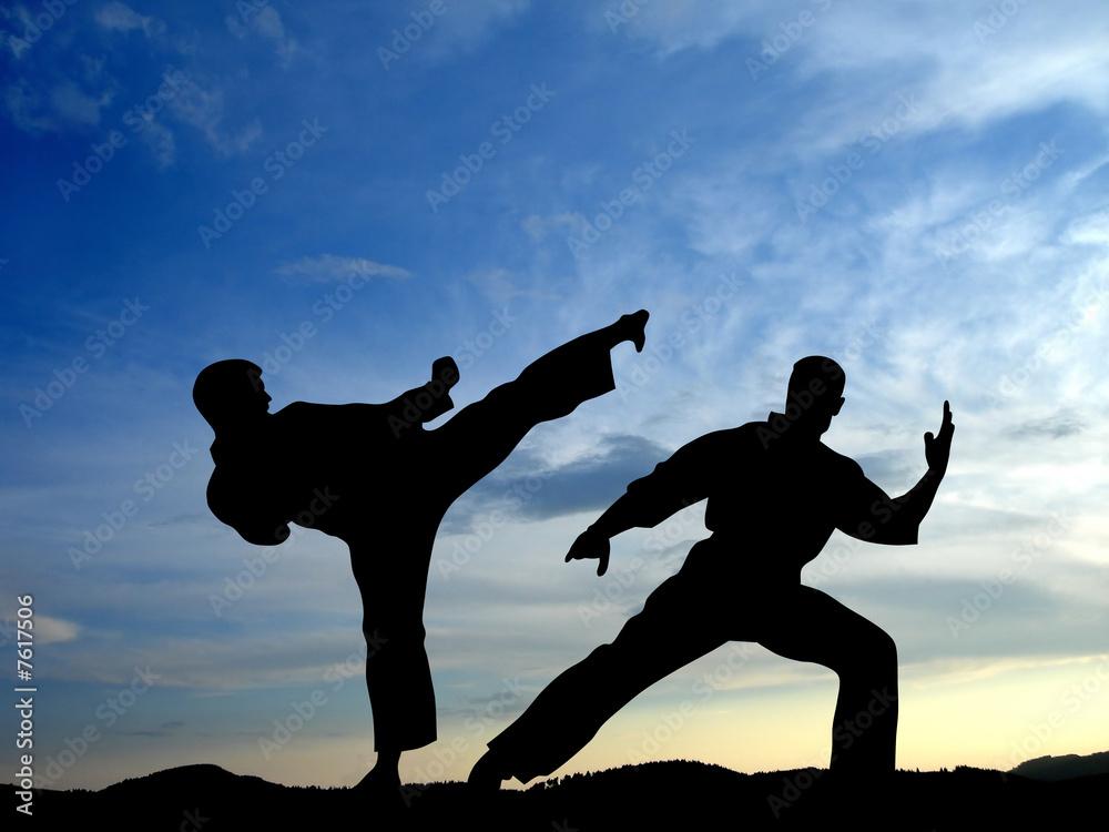 Foto-Stoff bedruckt - Karate