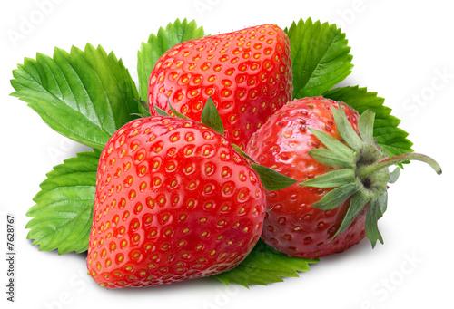 Fotorollo basic - strawberry