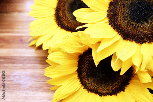Fotografie, Obraz  Sunflowers on a wooden table