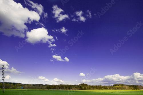 Poster Prune Wolken