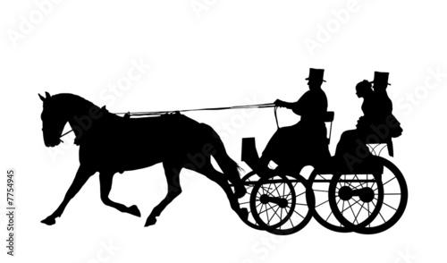 Valokuva  Horse And Carriage Wedding 5