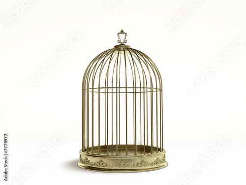 Obraz na plátně  bird cage
