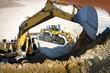 excavator and bull II
