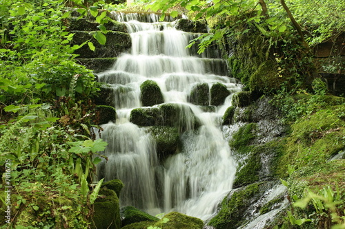 canvas print motiv - Colin Webb : WaterFall in the Woods