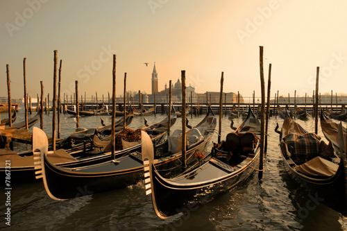 Poster de jardin Venice Venice gondolas